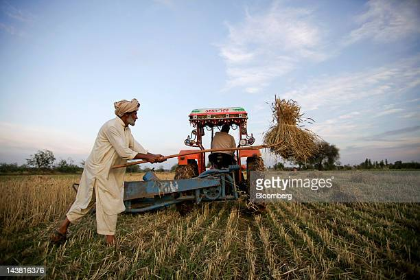 A farmer harvests wheat in the village of Fatehganj in Punjab province Pakistan on Thursday May 3 2012 Pakistan is Asia's thirdlargest grower of...