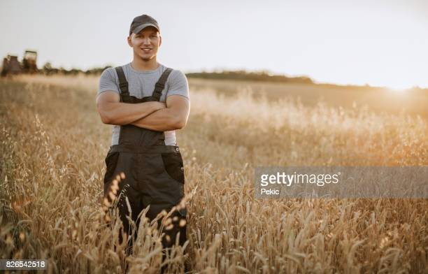 farmer has care of his wheat field - serbia stock pictures, royalty-free photos & images