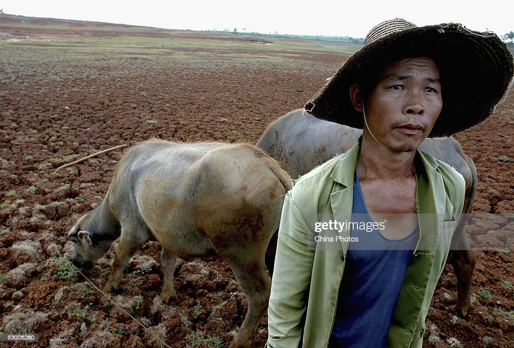 Worst Drought In 50 Years Hit Western Guangdong Province : Foto jornalística