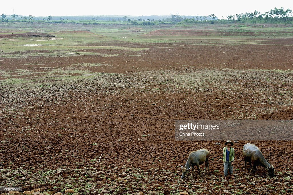 Worst Drought In 50 Years Hit Western Guangdong Province : News Photo
