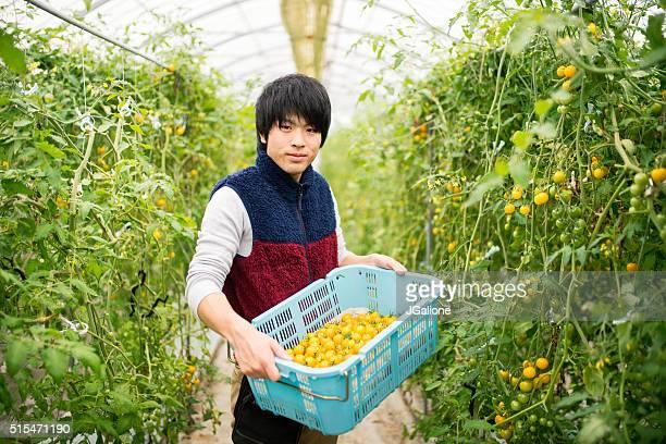 農家を持っているバスケットのトマト