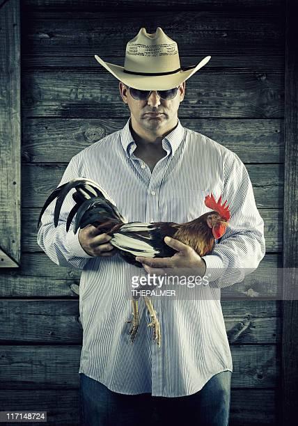 農家ながら戦うルースター - 動物を使うスポーツ ストックフォトと画像