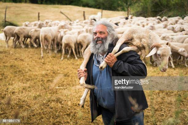 Farmer holding a sheep