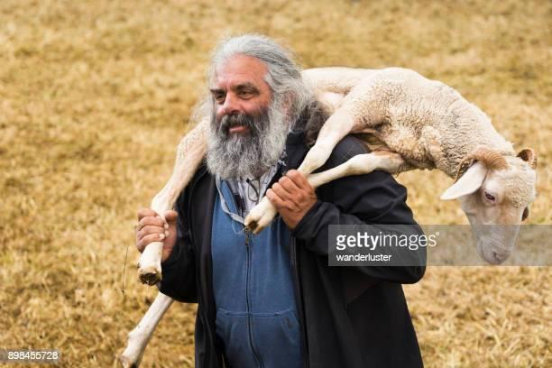 agricultor segurando uma ovelha - pastor de ovelha - fotografias e filmes do acervo