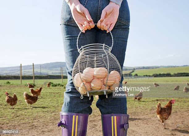 Farmer holding basket of eggs near chickens