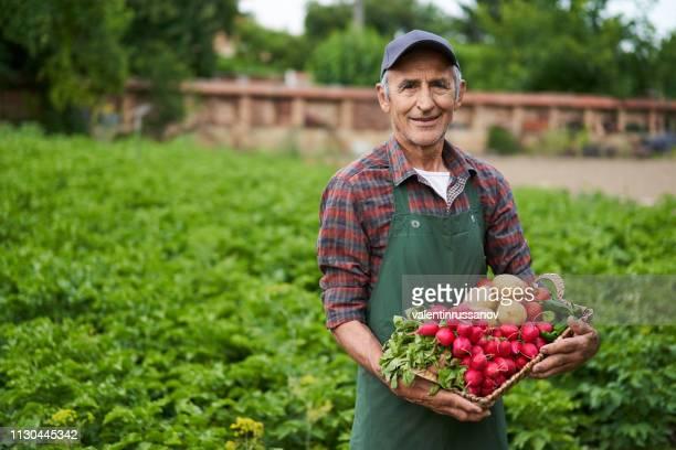 boer bedrijf mandje met groenten - bulgarije stockfoto's en -beelden