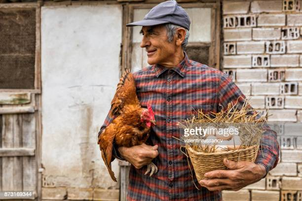 Jordbrukare som håller kyckling och korg med ägg