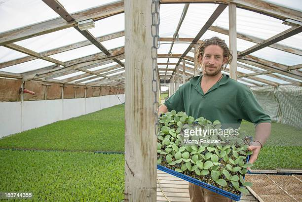 farmer holding seedlings to plant on organic farm, portrait - tadcaster stock photos and pictures