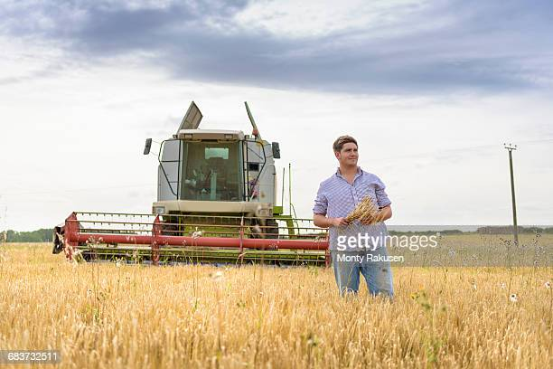 farmer holding sheaf of organic barley in field - monty rakusen stock pictures, royalty-free photos & images