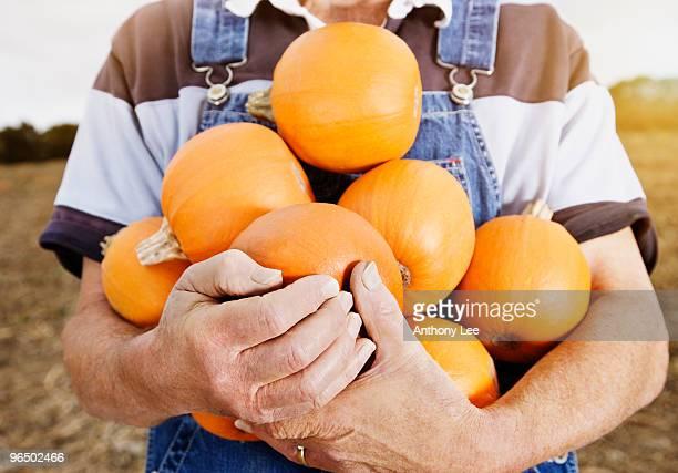 Farmer holding small pumpkins