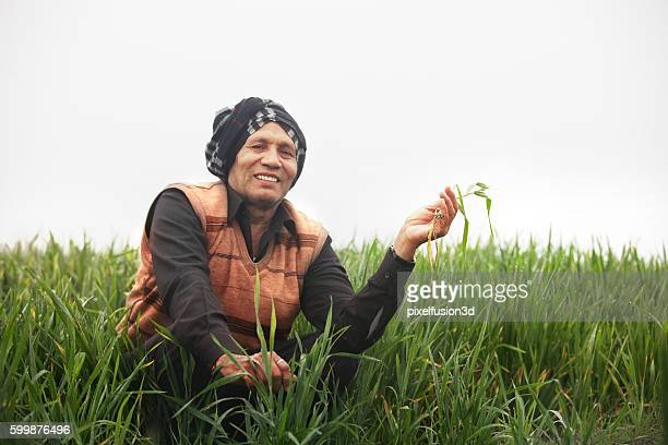 Farmer holding wheat plant