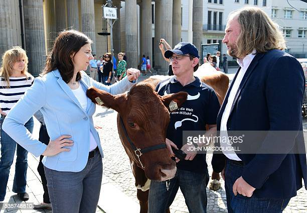 A farmer holds a cow as he speaks with German Green party Bündnis 90 Die Grünen parliamentary group leaders Katrin GöringEckardt and Anton Hofreiter...
