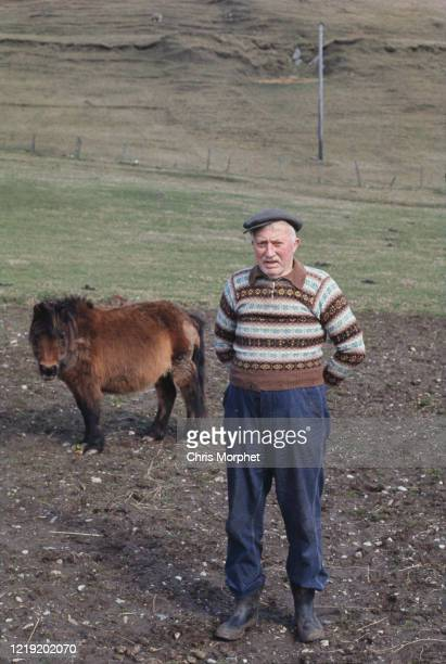 A farmer in a Fair Isle sweater standing next to a shetland pony Shetland Islands Scotland June 1970