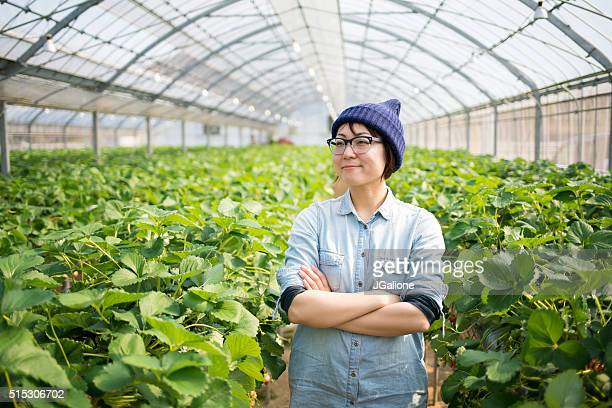 farmer in a greenhouse - urban garden stock pictures, royalty-free photos & images