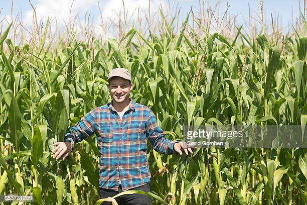 farmer in corn field looking at camera smiling - sigrid gombert stock pictures, royalty-free photos & images