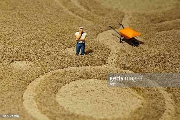 Farmer in crop circle