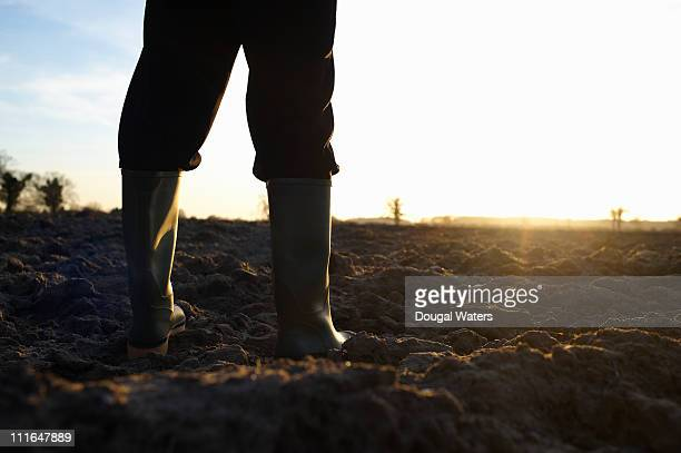 Farmer in field facing toward sun.