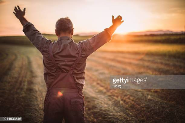 farmer in field . freedom - agronomist stock pictures, royalty-free photos & images