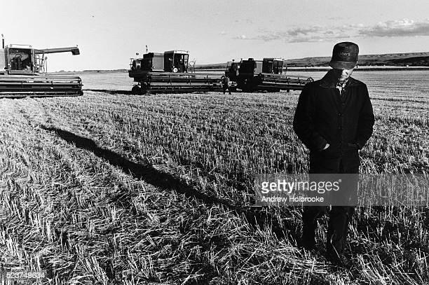 farmer in harvested wheat field - hutteriter bildbanksfoton och bilder