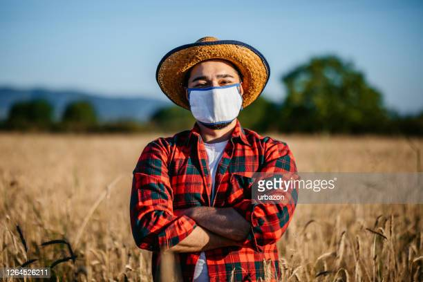 farmer in his cereal field - farm worker stock pictures, royalty-free photos & images