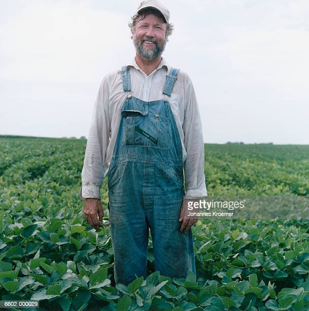 farmer in soybean field - dungarees stock pictures, royalty-free photos & images