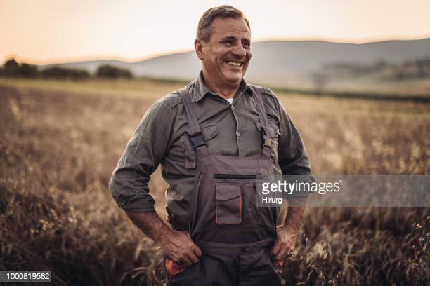 farmer in yellow wheat meadow .freedom concept - farmer stock pictures, royalty-free photos & images