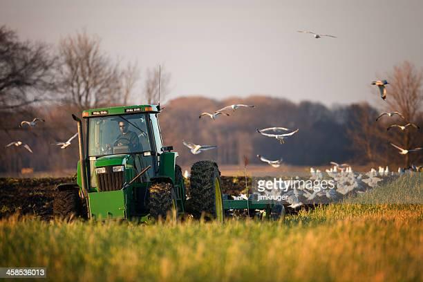 Farmer inside John Deere tractor tilling a field.