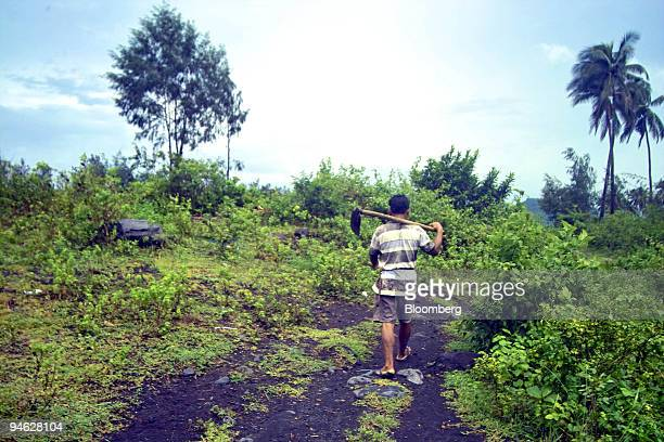 A farmer insists on working in the field despite the tight security that the Philippine military is enforcing in Mabinit a village in Legazpi City...