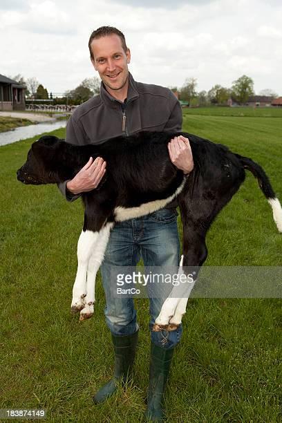 Farmer is holding a calf.