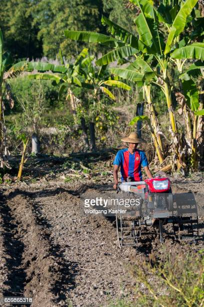 A farmer is plowing his field with a small tractor at Naungtaw Village on Inle Lake in Myanmar