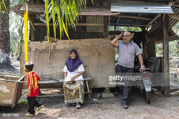 Farmer Isman Abdul Karim right and his wife Susi Abdul Rahman stand and sit at an oil palm plantation in Kampung Raja Musa Selangor Malaysia on...