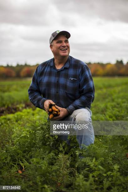 Farmer Jim Ward owner of Wards Berry Farm gathers carrots grown on his farm in Sharon Massachusetts US on Tuesday Oct 24 2017 An exbanker at Wells...