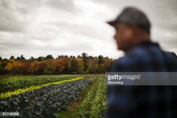 Farmer Jim Ward owner of Wards Berry Farm stands in front of a kale field at Wards Berry Farm in Sharon Massachusetts US on Tuesday Oct 24 2017 An...