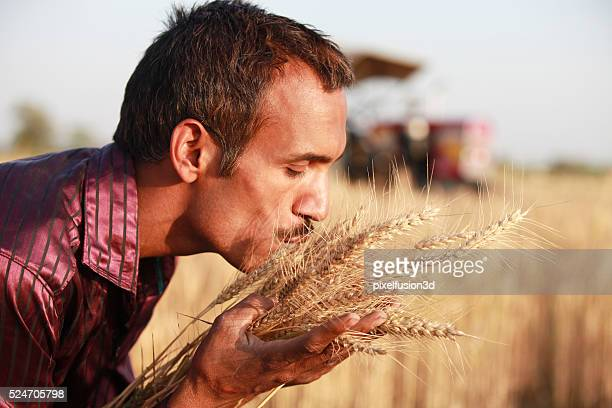 Farmer kissing his wheat crop