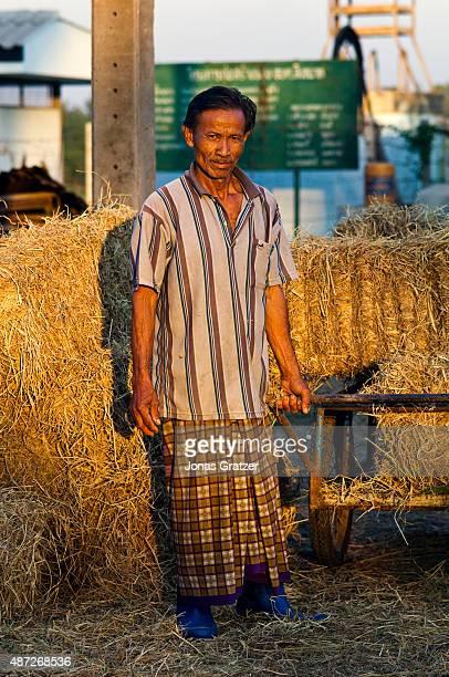A farmer loading hay on a cart