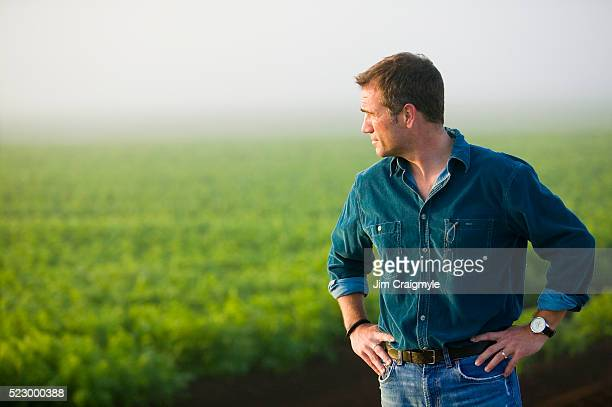 farmer looking at field - jim farmer stock photos and pictures