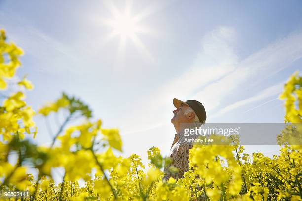 Farmer looking up at sun