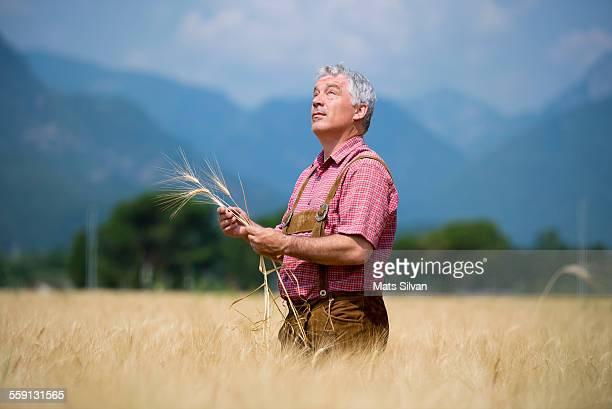 Farmer man in a wheat field