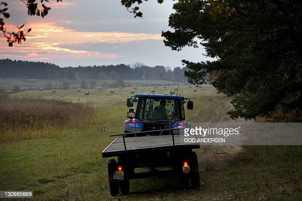 A farmer maneuvers his tractor to pick up hay balls on a field near the town of Burg in the east German state of Brandenburg on October 30 2011 The...