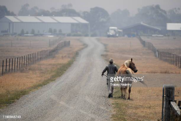 A farmer moves a horse closer to his property as strong winds create havoc by blowing up dust and ash as firefighters battle to control an...