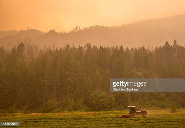 Farmer mows alfalfa amid the smoke from the Okanagon Complex Wildfires on August 23, 2015 near Omak, Washington. More than 1,000 personnel are...