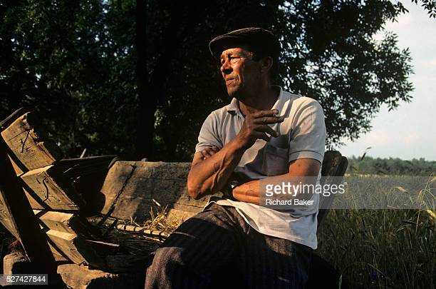 A farmer near the village of Grudziadz in Southern Poland rests on a hat cart on the edge of a corn field during harvest it is later afternoon and...