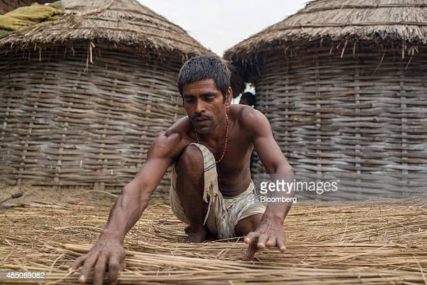Farmer Nishibi Rai prepares straw for a roof in Raghopur Bihar India on Monday July 27 2015 More than anywhere Bihar reflects the challenge Prime...