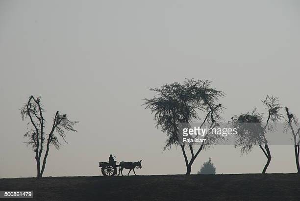 Farmer on his way to field