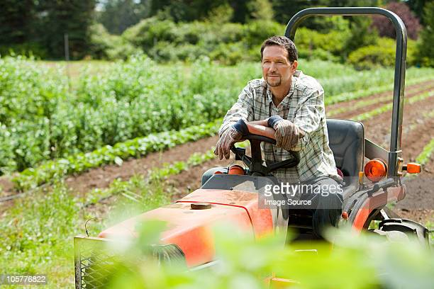farmer on tractor in field - tractor stock pictures, royalty-free photos & images