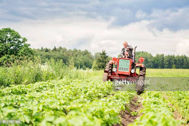 farmer on tractor - tractor stock pictures, royalty-free photos & images