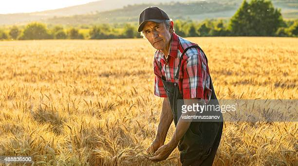 Farmer over looking the success of his crops