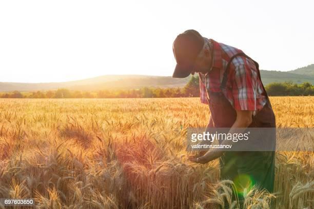 Landwirt mit Blick auf den Erfolg seines Cropped