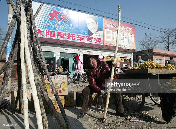 A farmer peels a sugarcane as she sells fruits at a weekend bazaar on December 17 2005 in Shiqiao Township of Pingdingshan City Henan Province...