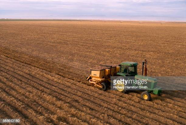 Farmer Planting Idaho Potatoes in Wide Field